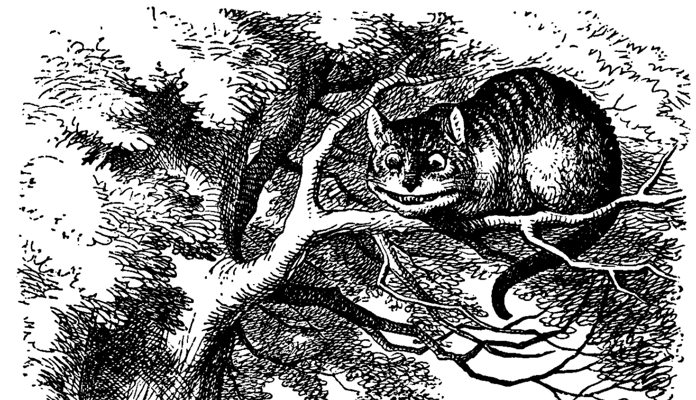 Lesson Plan Alice's Adventures in Wonderland The Cheshire Cat